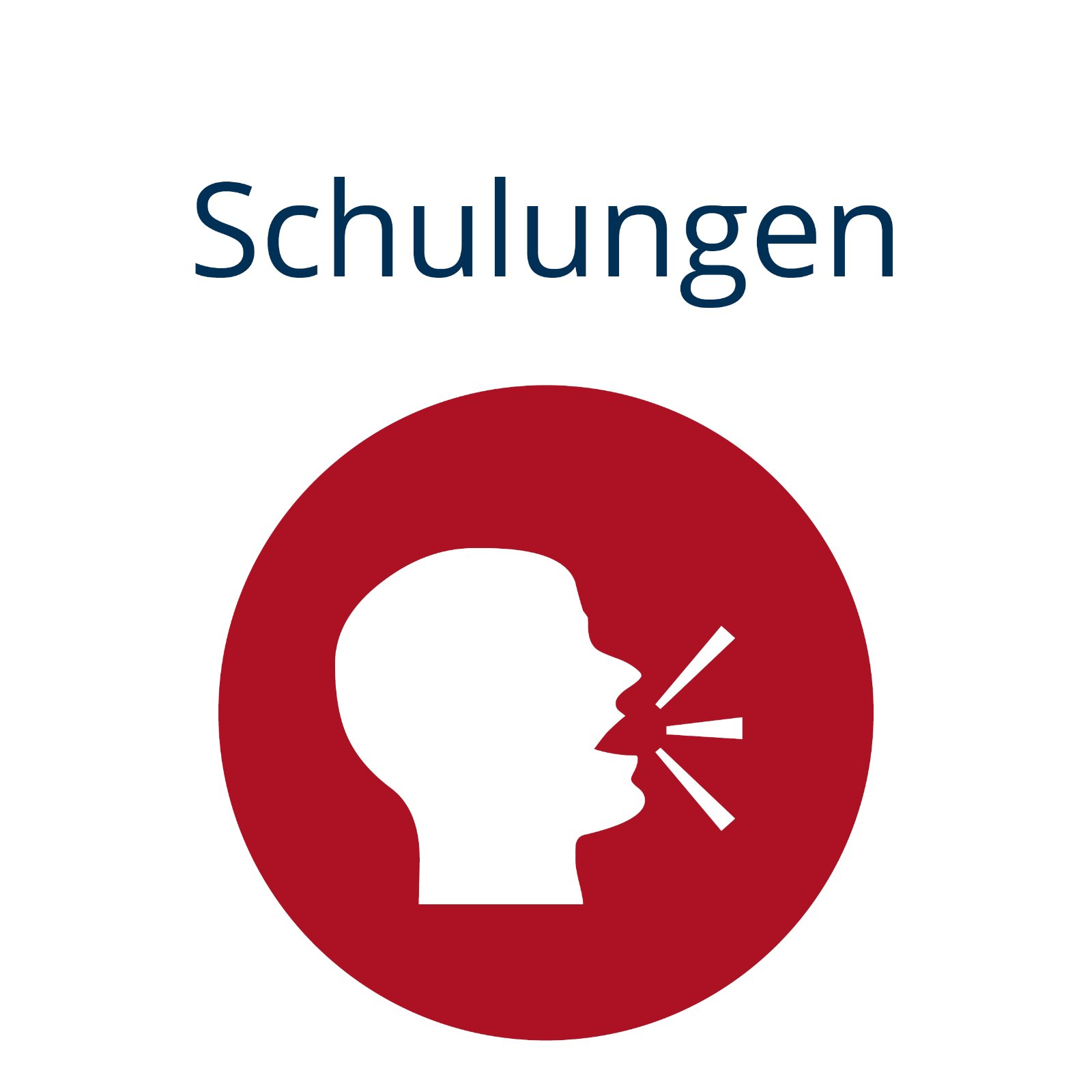 Icon Schulungen